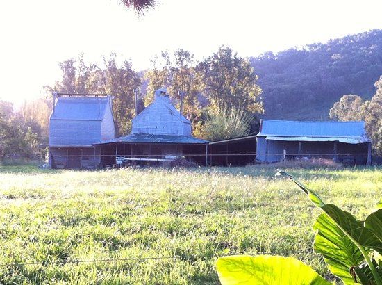 Myrtleford, Australia: next door so peaceful
