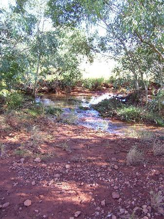 Down to Erth B &B: The babbling brook at Coober Pedy