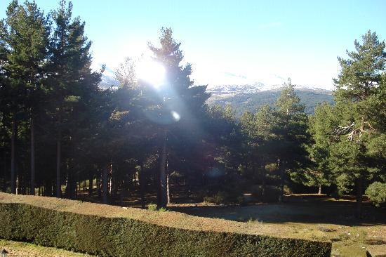 Navarredonda de Gredos, İspanya: Vista desde la habitación 416