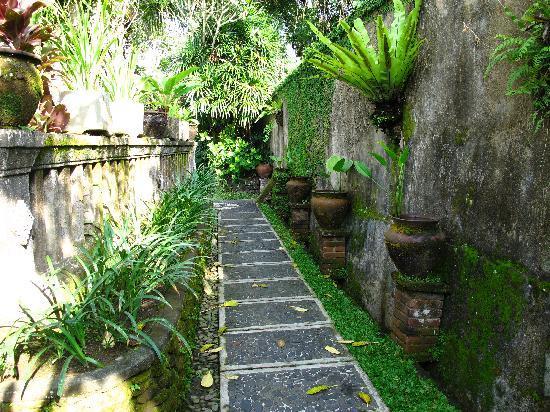 Ubud Bungalow: Grounds of the hotel