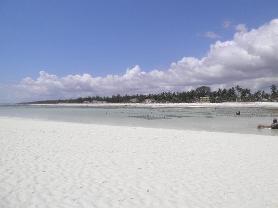 Next Paradise Boutique Resort : spiaggia vista dal mare con bassa marea
