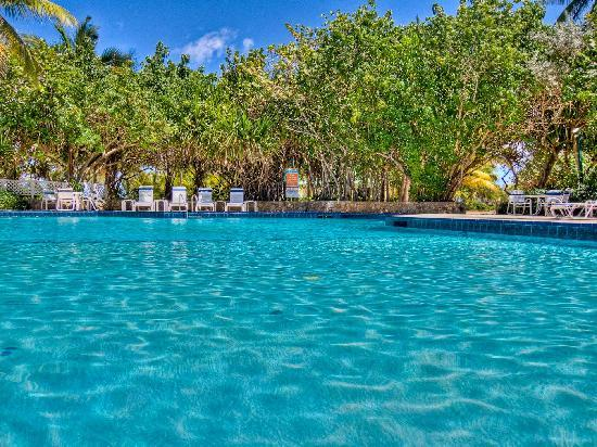 The Palms at Pelican Cove: Clean Pool