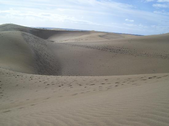 Playa del Ingles, Spanien: dune