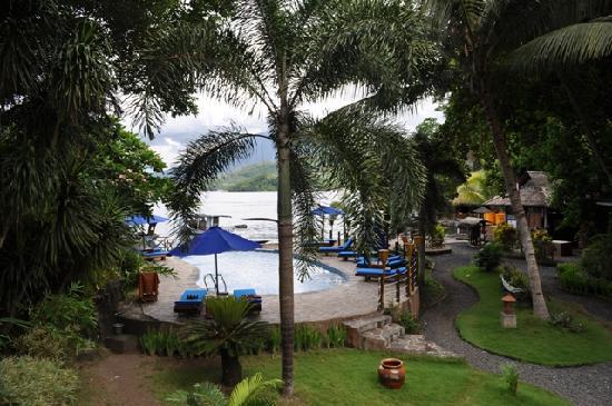 Lembeh Resort: Pool - Lembeh