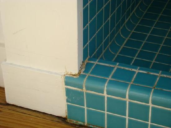 Parrot Cay: Moldy, rotting wood shower of a $3500 a night room. Unacceptable.