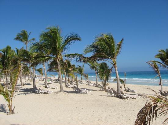 Hard Rock Hotel Punta Cana Nice Beach Plenty Of Chairs And Shade