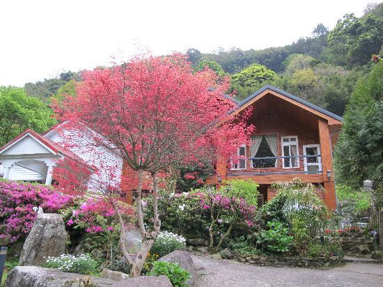 Fuyam Tourist Home: Garden view with maple tree
