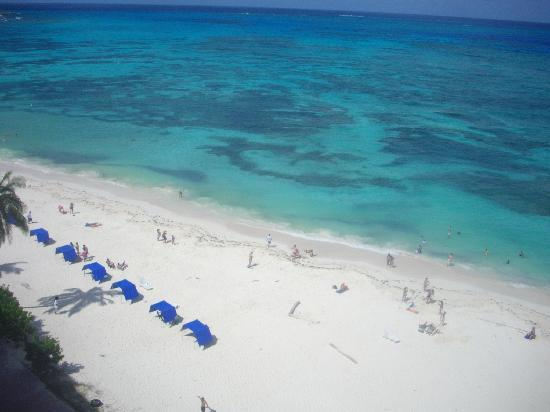Hotel Calypso: Desde la terraza, la mejor vista sobre la bahia