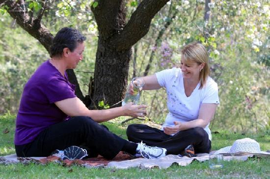 Hopewood Health Retreat: Picnic