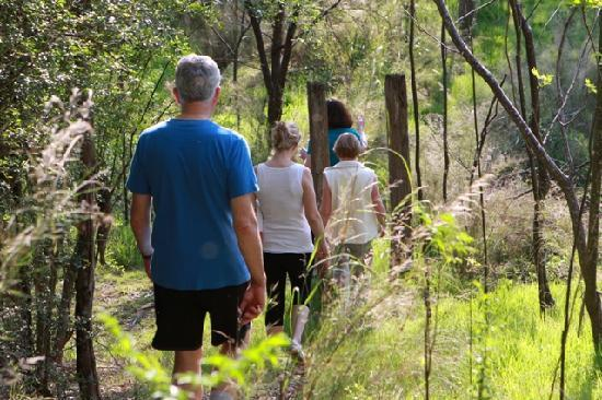 Hopewood Health Retreat: Beautiful bushwalks