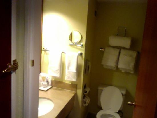 Barcelo Guatemala City: Tiny, poorly updated bathroom