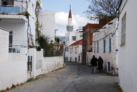 Seckin Konaklar Hotel: The town of Bodrum
