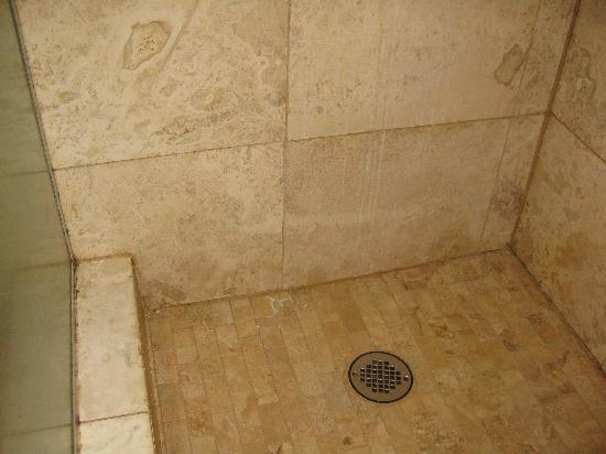 Hale O Pua Lani: Moldy, mildewy shower