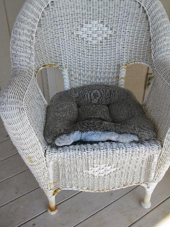 Hale O Pua Lani: Chewed cushion on chair on lanai - would you want to sit here?