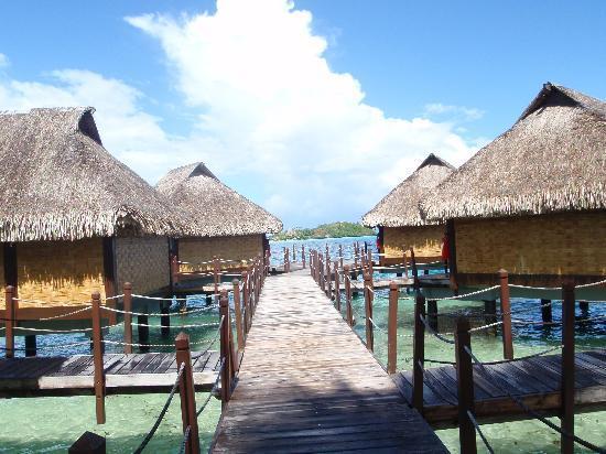 The bungalows picture of maitai polynesia bora bora for Bungalows flotantes en bora bora