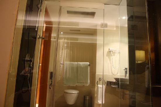 Lemon Tree Hotel Whitefield: The SHower