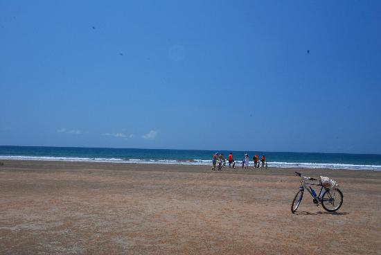 Kola Beach Resort: gita in bici