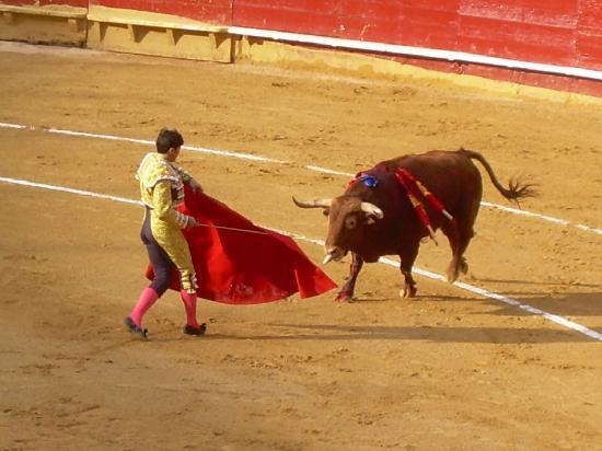 Antigua Morellana HS: spettacolo!!!!