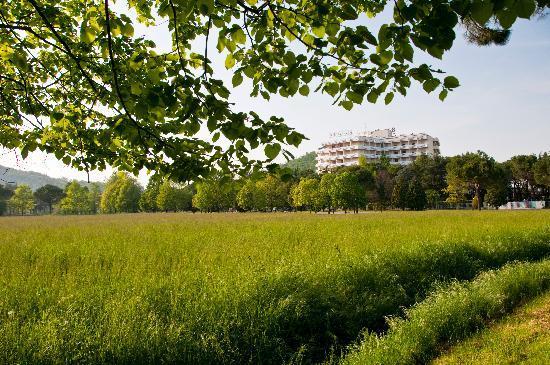 Apollo Hotel Terme: l'hotel apollo visto dall'esterno