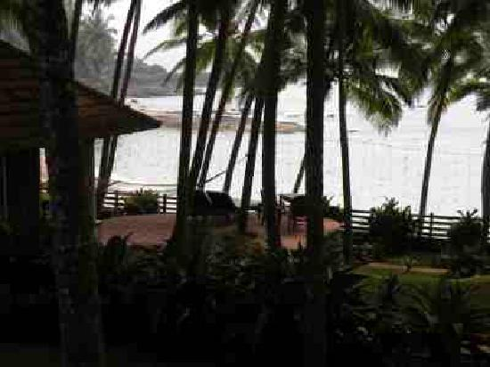 Coconut Bay Beach Resort: palmtrees directly on the beach