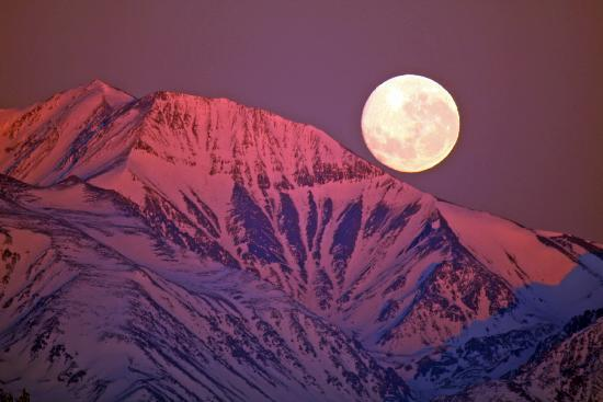 Finca Ogawa: full moon over the Andes