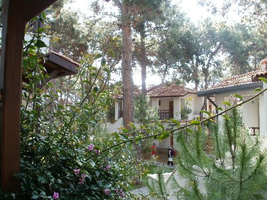 Voyage Sorgun: vu de notre terrasse
