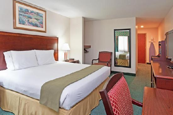 Holiday Inn Express Birch Run (Frankenmuth Area): King