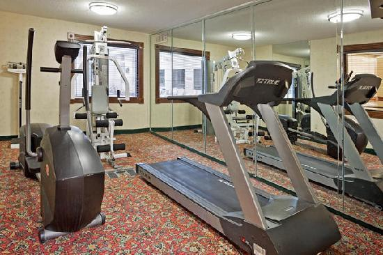 Holiday Inn Express Birch Run (Frankenmuth Area): Exercise Room
