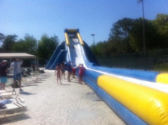 Sheraton Vistana Resort - Lake Buena Vista : great slide