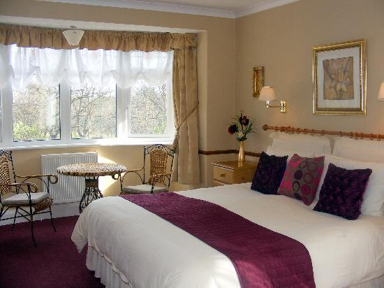 Alexander Hotel: One of four Luxury Level Rooms