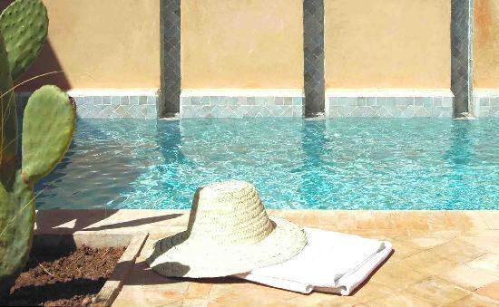 Dar Housnia: piscine
