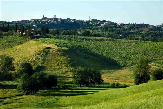 Aia Mattonata Relais: Siena