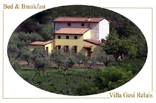 Villa Gesi: Esterno