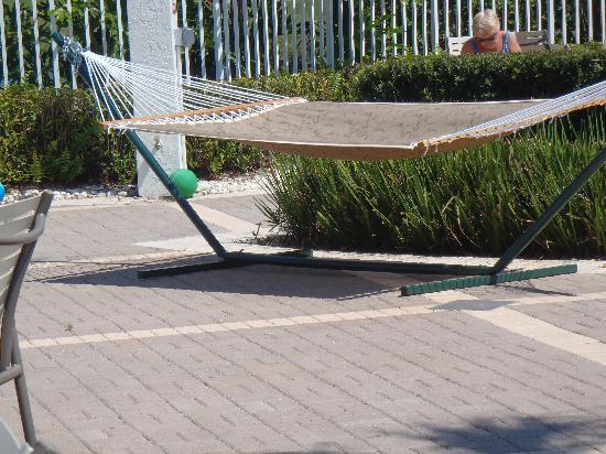 Sheraton PGA Vacation Resort Villas: hammock by the pool
