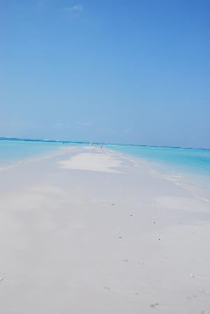 คุรีดุ ไอแลนด์ รีสอร์ท แอนด์ สปา: Langue de sable