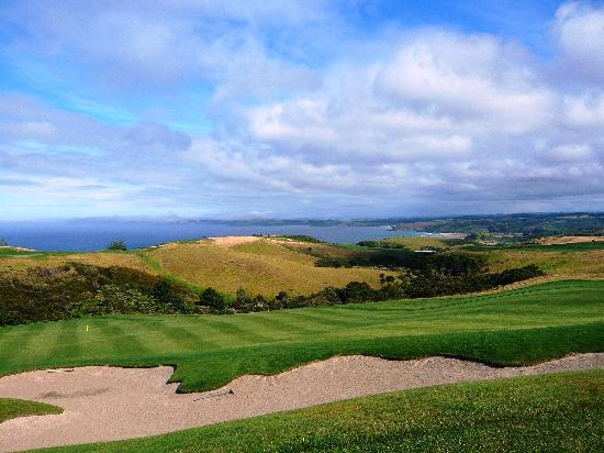 The Lodge at Kauri Cliffs: View of golf course