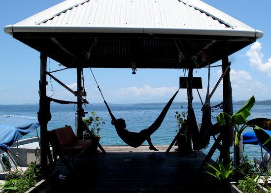 Casa Verde Hostel & Guesthouse: The essence of Casa Verde