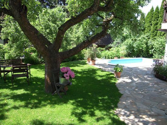 garten swimming pool bild von pension anzengruber wien tripadvisor. Black Bedroom Furniture Sets. Home Design Ideas