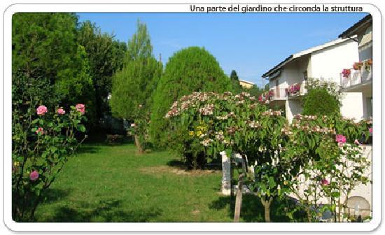 Bed & Breakfast Poggio Carolina: Una parte del giardino