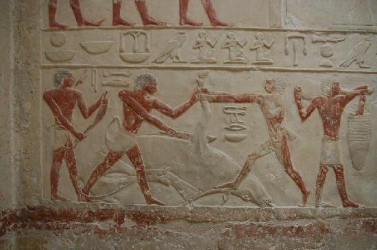 Saqqara (Sakkara) Pyramids: inside tomp drawing