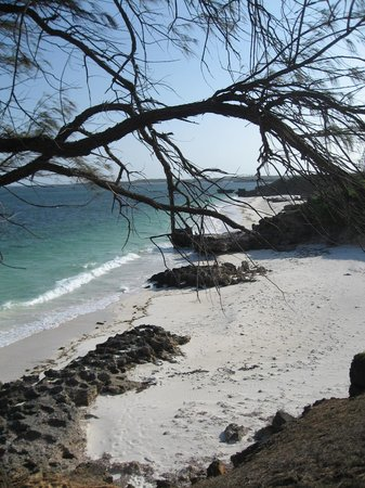 Temple Point Resort: watamu