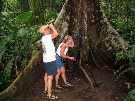 Costa Rica Jade Tours: Nature Picture