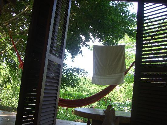 Funky Monkey Lodge : Waking up, view from bed.