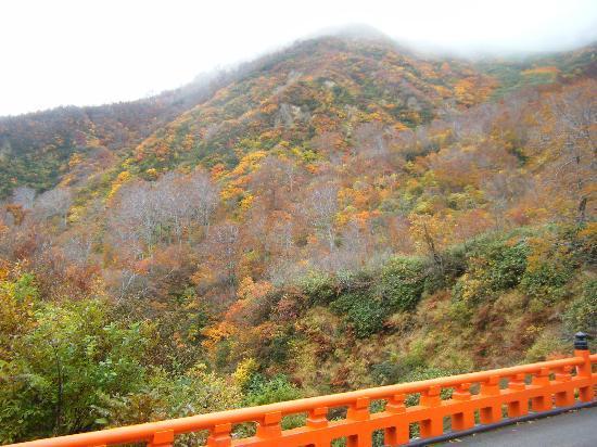 Yudonosan Shrine: 神妙