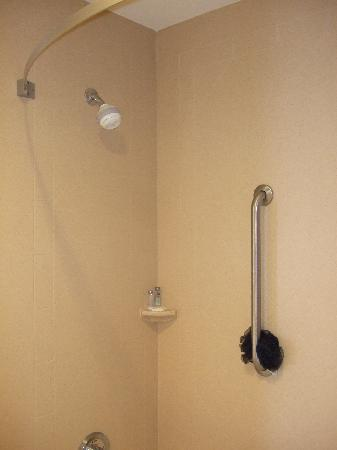 Hampton Inn & Suites Prescott Valley: Shower