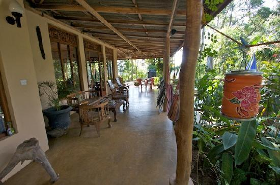 Waterfalls Homestay: Patio that wraps around the guest house