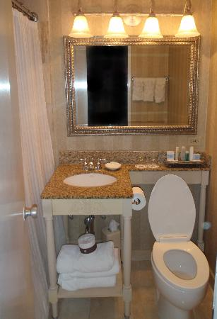 Omni Royal Orleans: The sink protrudes into the center of the tiny bathroom.