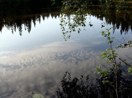 Ostrovito Moryushko: Paysage solovetskien