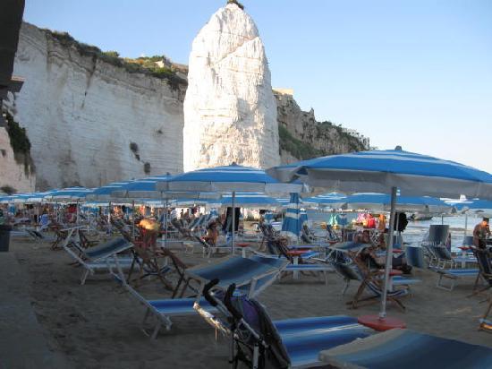 Hotel Mediterraneo : spiaggia riservata hotel