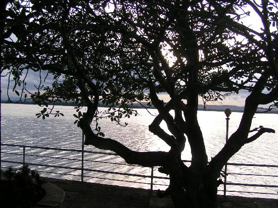 Polonnaruwa Resthouse: vue sur le lac